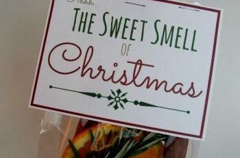 27 Cute Christmas Gift Ideas for Neighbors