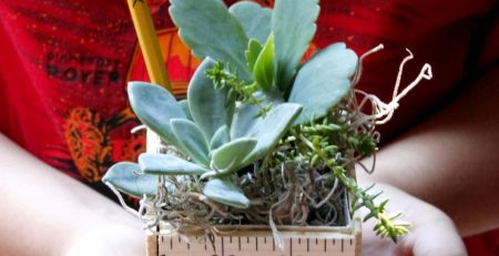 Teachers Rule Make This DIY Planter for the First Day
