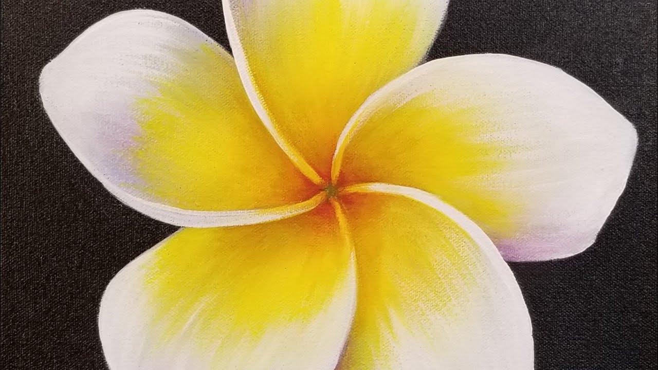 Plumeria Flower Acrylic Painting LIVE Tutorial